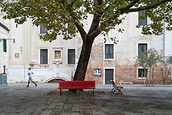 Early morning jogger passes a tree in Dosoduro, Venice, Italy.<br /> Photo: Ed Maynard<br /> 07976 239803<br /> www.edmaynard.com