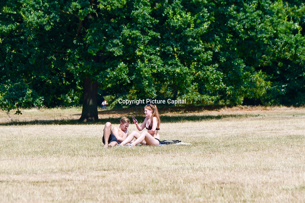 People sunbathe at Hype Park in London on July 6, 2018 during a weekend heatwave in the United Kingdom.