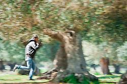 Dopo l'arrivo a Lampedusa, il governo ha stabilito il trasferimento dei migranti nei campi di Sicilia e Puglia. In Puglia la tendopoli (allestita dai Vigili del Fuoco) è situata tra Manduria e Oria..Queste sono le immagini delle prime fughe..I tunisini che vengono ospitati nel centro fuggono saltanto la bassa rete di recinsione, e si dirigono verso i due paesi..Questi sperano di arrivare alle stazioni ferroviarie e di partire per il nord, principale destinazione Ventimiglia e poi la Francia.