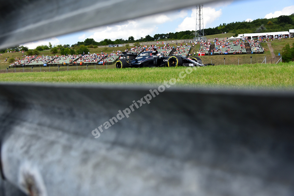 Fernando Alonso (McLaren-Honda) seen trough armco during practice before the 2016 Hungarian Grand Prix at the Hungaroring outside Budapest. Photo: Grand Prix Photo