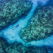 Free diving and spearfishing in San Salvador, Bahamas with Joe and Alli Penovich and Kimi Werner