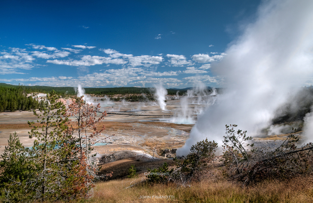 The Norris Geyser Basin in Yellowstone National Park.
