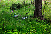 Two chairs in overgrown French garden facing each other.