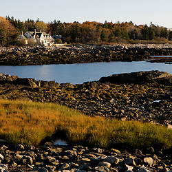 Marsh grasses on the coast in fall at Timber Point, in Biddeford, Maine.