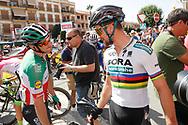 Elia Viviani (ITA - QuickStep - Floors), Peter Sagan (SVK - Bora - Hansgrohe), during the UCI World Tour, Tour of Spain (Vuelta) 2018, Stage 7, Puerto Lumbreras - Pozo Alcon 185,7 km in Spain, on August 31th, 2018 - Photo Luis Angel Gomez / BettiniPhoto / ProSportsImages / DPPI