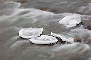 Several blocks of ice get trapped on the rocks in the Middle Fork Snoqualmie River near North Bend, Washington.