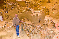 Dr. Larry Agenbroad, site director, In-situ exhibit of 26,000 year old Wooly Mammoth bones, The Mammoth Site, Hot Springs, South Dakota USA