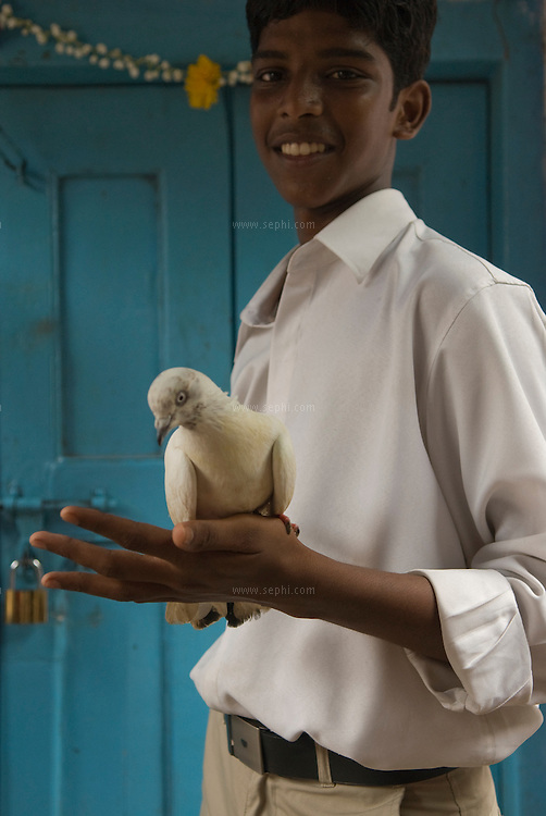 A youth and his white dove on the occasion of India's independence day.
