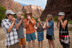 North America, United States, Colorado, Dinosaur National Monument, Green River (Gates of Lodore section), kids learning to whistle with leaf.  MR