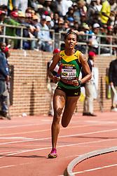 Penn Relays, USA vs the World, 4x400 relay, McPherson, Jamaica