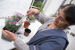 Older woman at home planting some flowers,