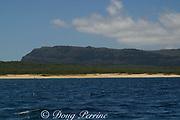 Niihau Island, off Kauai, Hawaii, USA ( Central Pacific Ocean )