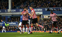Lincoln City's Michael Bostwick (left) celebrates scoring his side's first goal of the game with team-mate Jason Shackell during the Emirates FA Cup, third round match at Goodison Park, Liverpool.