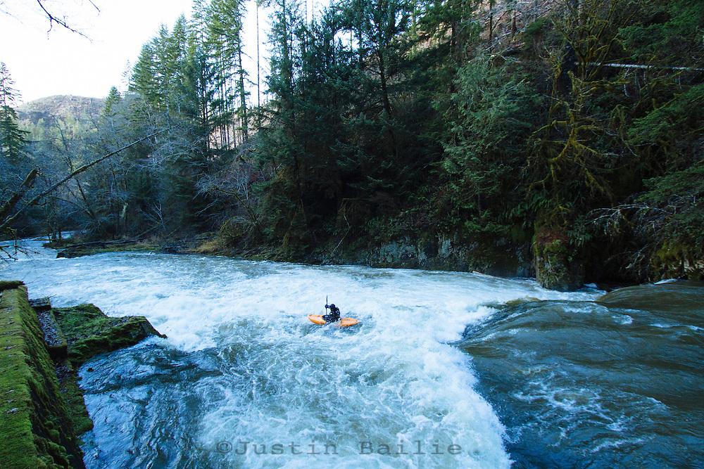 Man kayaking on the North Fork of the Nehalem River on the Oregon coast.