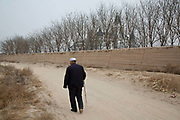 An elderly Hui muslim man walks past the site of Chateau Saint Louis Ding, in Yinchuan, Ningxia Hui Autonomous Region, China on 20 December  2012.  With its dry climates and ample sunshine, and encouraged by the huge boom in Chinese consumer's demand for wine, Ningxia is quickly becoming one of the biggest wine producing regions in China.