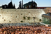 Jews Pray at the wailing wall, Old City, Jerusalem
