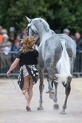 Tiana Coudray (USA) shows a bit of cheek trotting up Ringwood Magister during the First Inspection - CCI4*  <br /> Mitsubishi Motors Badminton Horse Trials Badminton 2014<br /> © Hippo Foto - Jon Stroud