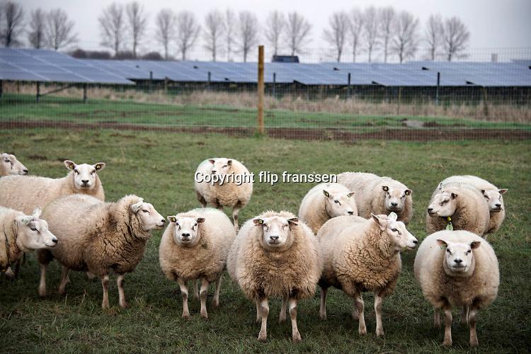 Nederland, Bemmel, 7-1-2020Een veld zonnepanelen . Het is een perceel waar voorheen landbouw of veeteelt werd bedreven . De eigenaar, boer, had geen opvolging en gaat stoppen met de veehouderij. Hij verpacht zijn land aan een private onderneming die zonnevelden wil exploiteren. Boerenland . Foto: Flip Franssen