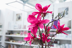 Artificial flower for sale in garden centre, Augsburg, Bavaria, Germany
