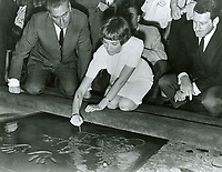 1966 Julie Andrew's hand/footprint ceremony at the Chinese Theatre