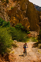 Woman mountain biking in Cedar Canyon, near Cedar City, Utah USA