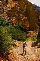 Woman mountain biking in Cedar Canyon, near Cedar City, Utah USA