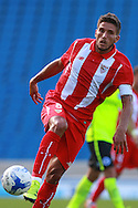 Daniel Carrico during the Pre-Season Friendly match between Brighton and Hove Albion and Sevilla at the American Express Community Stadium, Brighton and Hove, England on 2 August 2015. Photo by Bennett Dean.