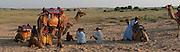Thar Desert camels at sunset - Rajasthan Jaisalmer India 2011