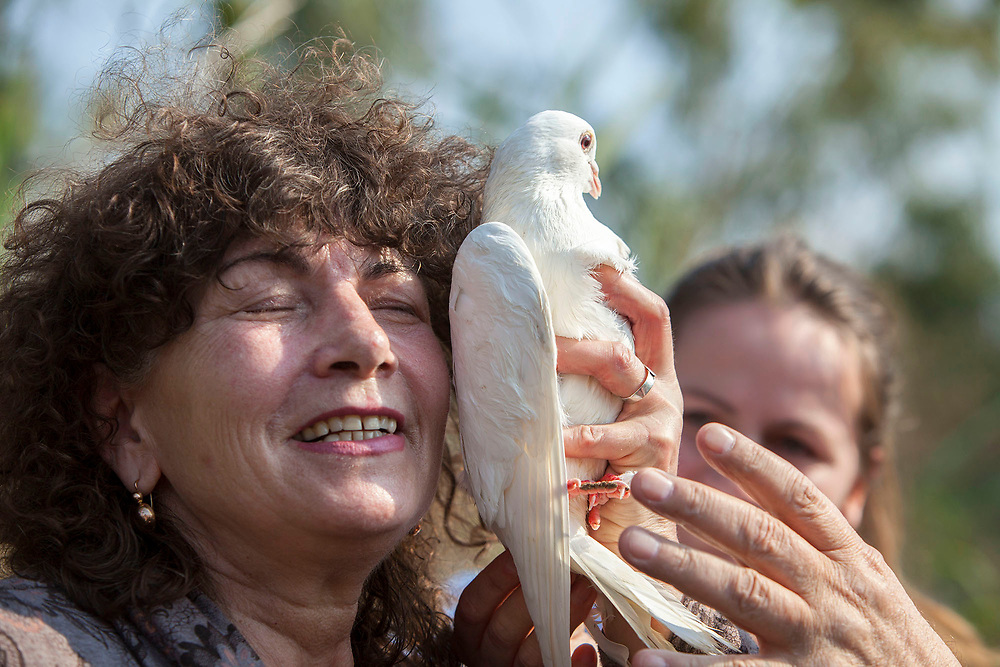 "A woman is holding a white Dove that was released during a prayer ceremony at the celebrations of the Epiphany at the 'Qasr el Yahud' baptism site in the Jordan River Valley, near the West Bank city of Jerico. The Epiphany celebrates the baptism of Jesus, which is belived to be in this same location.<br /> <br /> There are many pidgeons especialy white all around the site, they are being released by the clergyme during the ceremony at the Day of the Epiphany as part of the ritual commemorating the baptism of Jesus and his spiritual birth in the form of a dove coming out of the sky.<br /> **Matthew 3:13-17**<br /> ""...Then John yielded to him. 16 After Jesus was baptized, just as he was coming up out of the water, the heavens opened and he saw the Spirit of God descending like a dove and coming on him. 17 And a voice from heaven said, ""This is my one dear Son; in him I take great delight."""