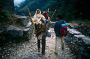 High in the Nepali Himalayan foothills, an elderly woman is carried downhill by a relative for medical attention.