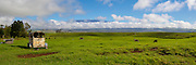 Ranch Land , Waimea, Kamuela, Island of Hawaii