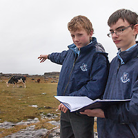 Thomas Hartigan and Dara Kenneally from Mary Immaculate Secondary School, Lisdoonvarna, studying the movement of out-wintering cattle in the Burren