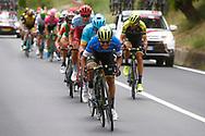 Johan Esteban Chaves (COL - Mitchelton - Scott) during the 101th Tour of Italy, Giro d'Italia 2018, stage 10, Penne - Gualdo Tadino 239 km on May 15, 2018 in Italy - Photo Luca Bettini / BettiniPhoto / ProSportsImages / DPPI