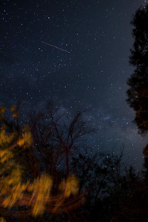 Taken at Zion National Park