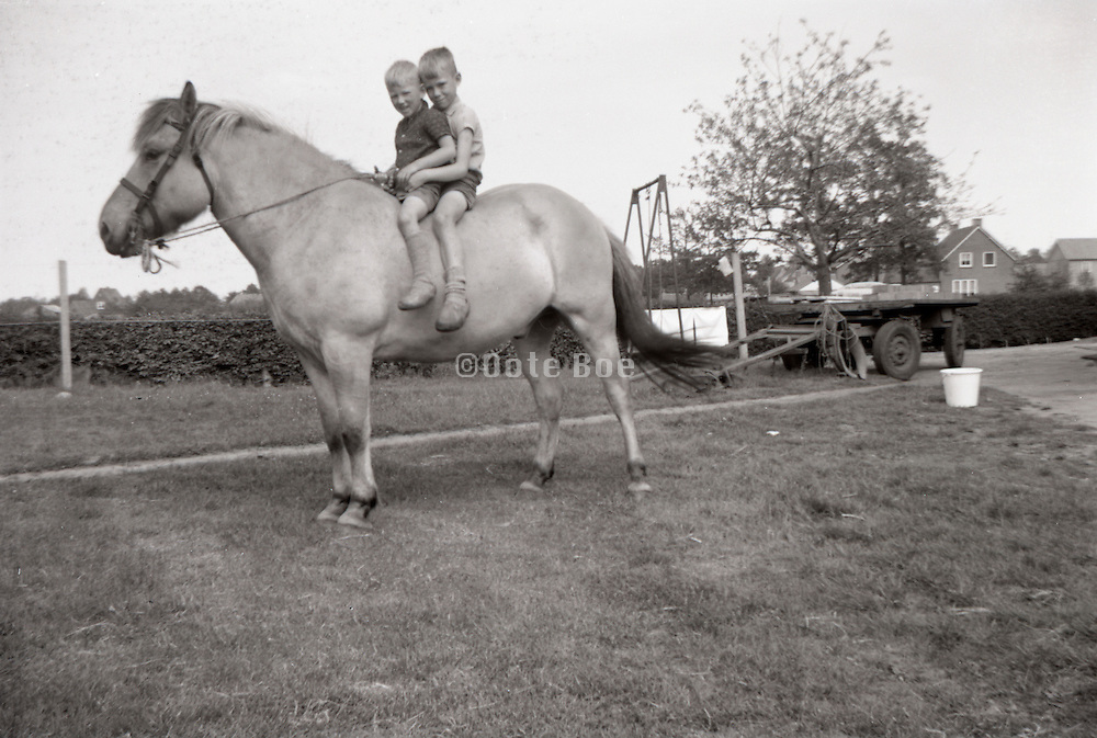 Two boys sitting on a horse.