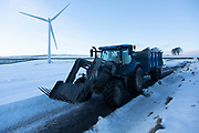 A farmer drives through a wind farm with his load in the Scottish Borders, 25th of January 2021, Scotland, United Kingdom. It has been snowing in recent days and the ground is covered in white. The wind farm, Longpark Wind Farm, is long established and part of the renewable energy production in Scotland. The farm sits in the hills above the village Stow, near Galashield in the Scottish Borders.