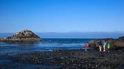 USA, Oregon, Newport, Yaquina Head, NLCS, a family enjoys the sights at Cobble Beach