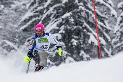 Suzuki Takeshi of Japan during Slalom race at 2019 World Para Alpine Skiing Championship, on January 23, 2019 in Kranjska Gora, Slovenia. Photo by Matic Ritonja / Sportida