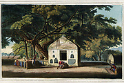 The Sacred Tree of the Hindoos at Gyah, Bahar, May 1796 By the natives this favourite Tree is called the Baur, and by Europeans the Banyan. It is a species of the fig, and bears a small red fruit. In every village they are to be met with. Small temples are usually built under them, where frequently may be observed fragments of mutilated idols, the work of Mahommedan intolerance, which are again often collected by the patient Hindoos, and, though defaced, are still regarded with veneration. This Tree, the Bramins assure the people, proceeds from another more sacred one, which is growing within a very ancient temple, under ground, in the fort of Allahabad; and, notwithstanding the distance is not less than two hundred miles, the story obtains an easy belief from credulous devotees, who cheerfully pay the sacred fee that admits them to a ceremonial adoration of it. Gyah is near three hundred miles N. W. from Calcutta. From the book ' Oriental scenery: one hundred and fifty views of the architecture, antiquities and landscape scenery of Hindoostan ' by Thomas Daniell, and William Daniell, Published in London by the Authors January 1, 1812