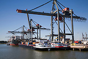 Container port quayside cranes, Port of Rotterdam, Netherlands