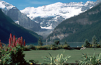 Lake Louise and Glacier   Photo: Peter Llewellyn