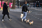 A man walks across the road while walking his two small dogs, on 8th March 2021, in London, England.