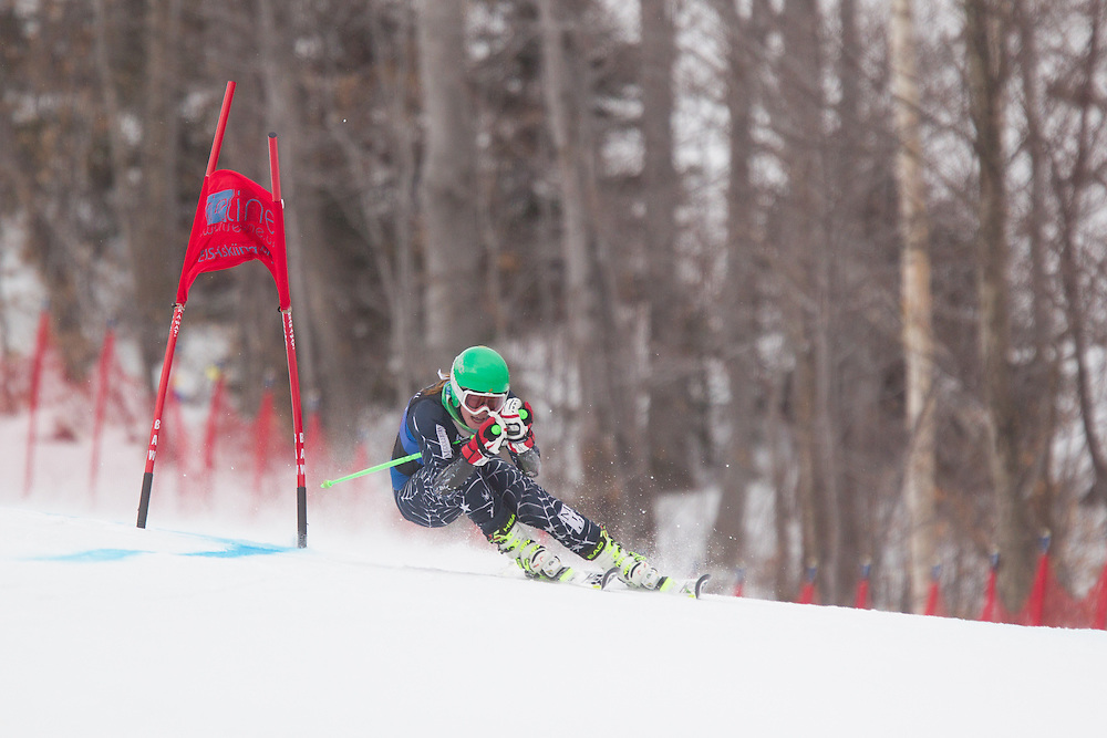 Elle Gilbert, of Middlebury College, skis during the second run of the women's giant slalom of the University of Vermont Carnival on January 10, 2014 in Stowe, VT. (Dustin Satloff/EISA)