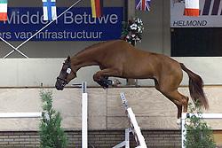 Pevade M (Quidam de Revel x Landgraf I)<br />vrijspringen driejarigen<br />KWPN paardendagen Ermelo 2000<br />Photo © Dirk Caremans