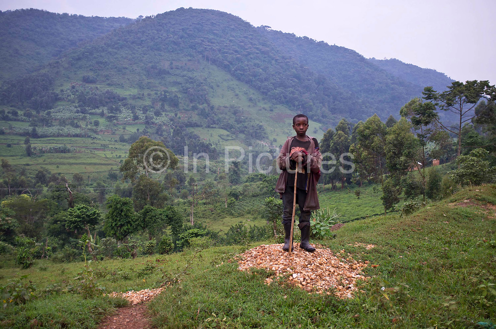 A young goat herder from the Buhoma village in Uganda watches over his goats.