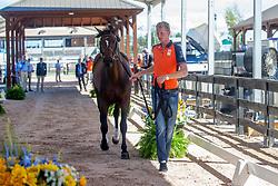 Schuttert Frank, NED, Chianti s Champion<br /> World Equestrian Games - Tryon 2018<br /> © Hippo Foto - Dirk Caremans<br /> 17/09/2018