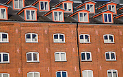 Windows of offices in converted industrial building, Felaw Maltings, Ipswich, Suffolk, England