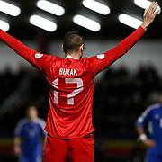 Turkey's Burak Yilmaz celebrate his goal during the FIFA World Cup 2014 qualification match Andorra betwen Turkey at the Andorra la Vella stadium in Andorra March 22, 2013. Photo by TURKPIX
