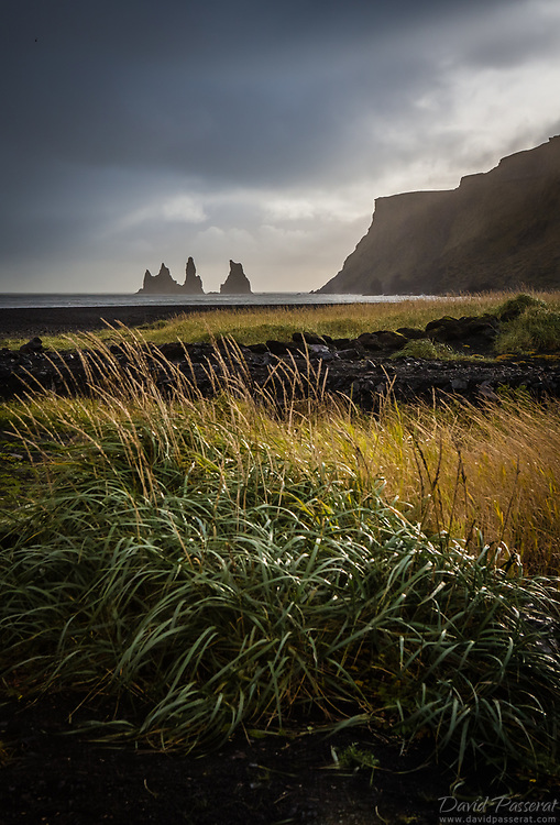Vik's countryscape