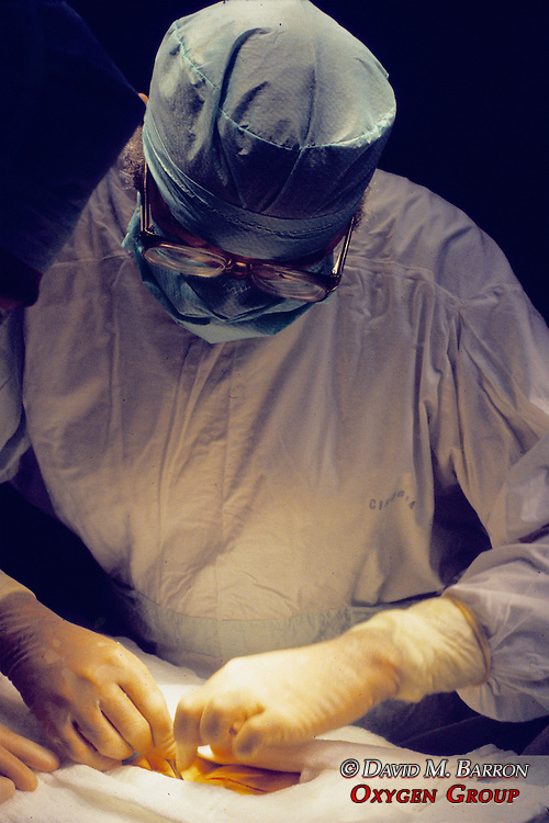Dr Rodrigo Scarpetta Performing Surgery